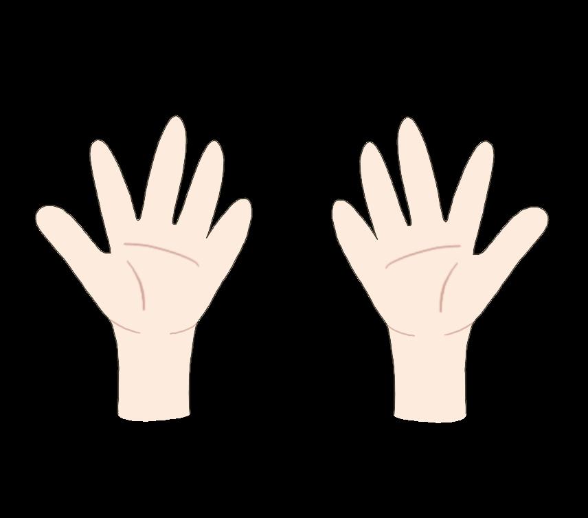両手のイラスト