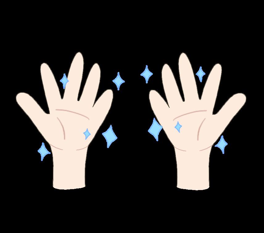 清潔な両手のイラスト