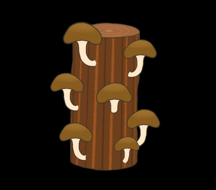 原木に生える椎茸のイラスト