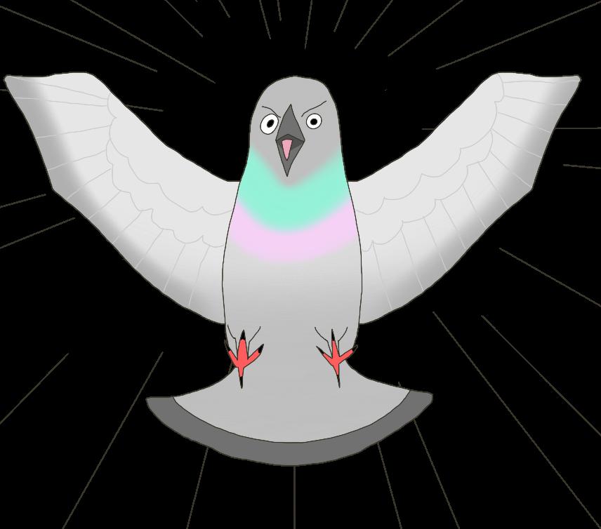 襲いかかる鳩(ハト)のイラスト