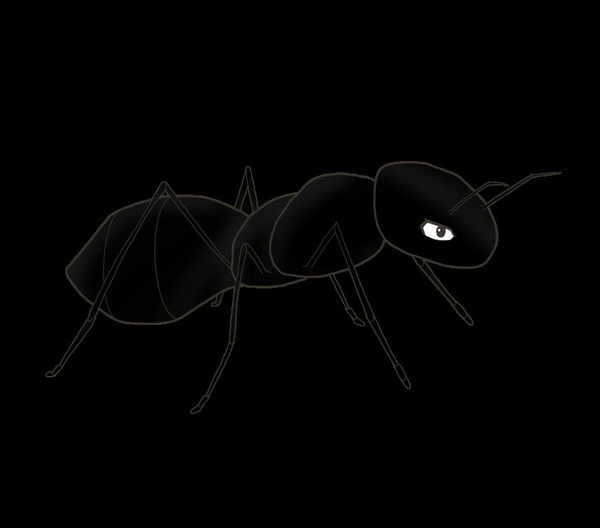蟻(あり)のイラスト