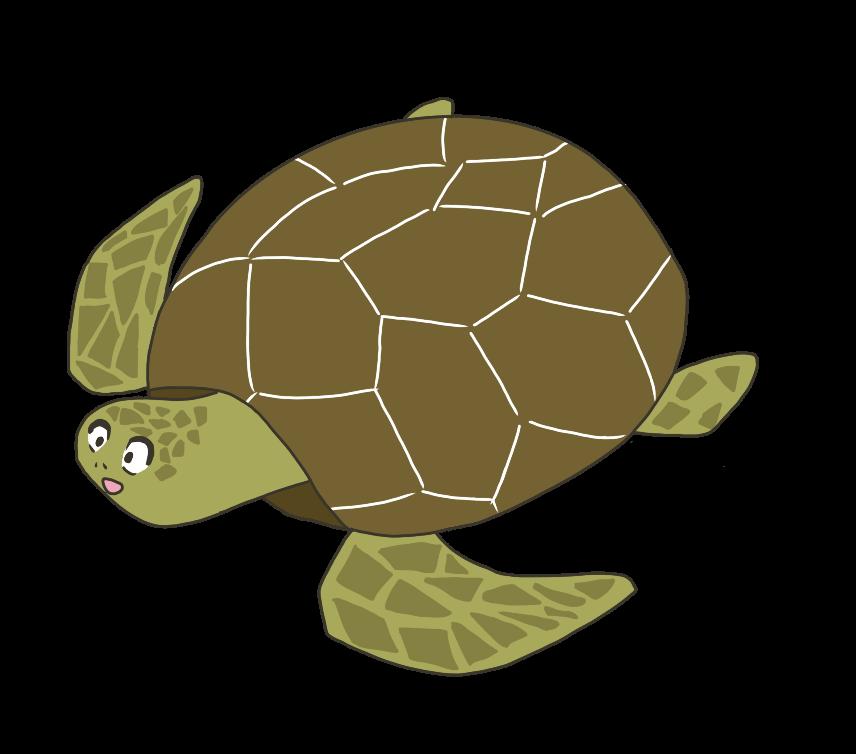 海亀(ウミガメ)のイラスト