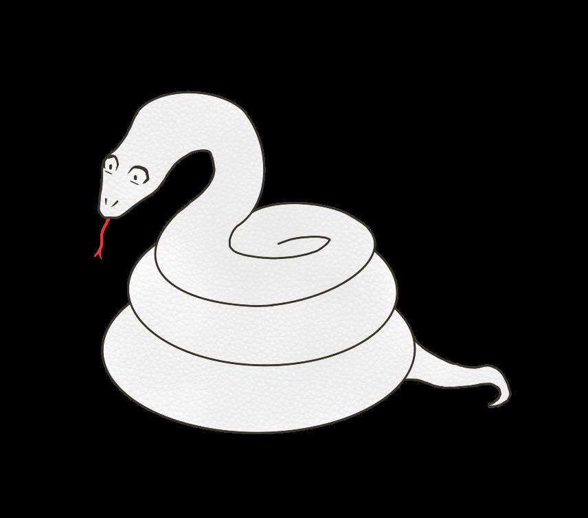 白蛇(シロヘビ)のイラスト